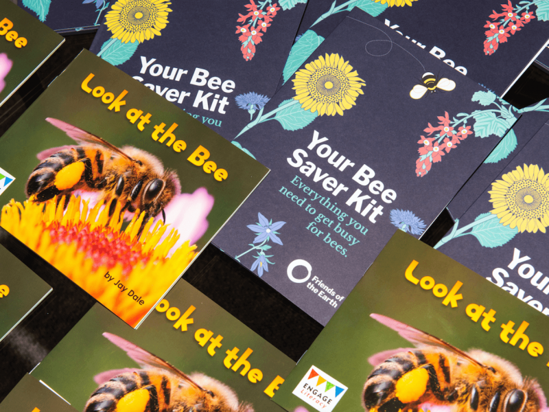 Friends of the Earth Bee Saver Kits and Bee Books