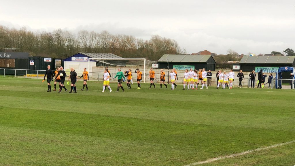 Fylde Ladies 1-2 Hull City Ladies: Tigresses sink their teeth into Fylde to climb off league bottom