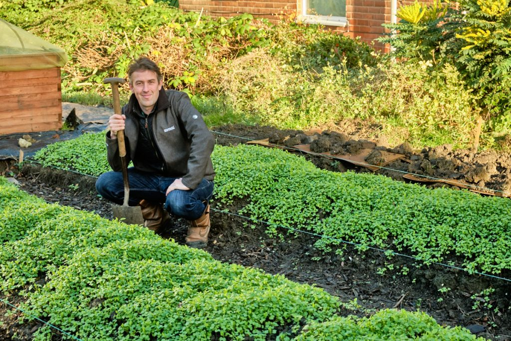 John Pickles, Community Growing Co-ordinator for EMS Ltd, at the growing site in Wincolmlee, Hull.