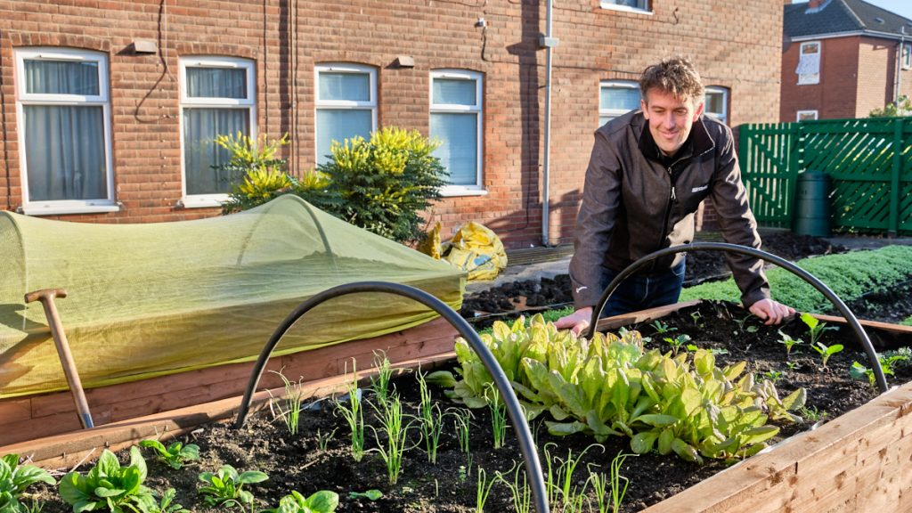 John inspecting the raised beds at the Wincolmlee growing site.
